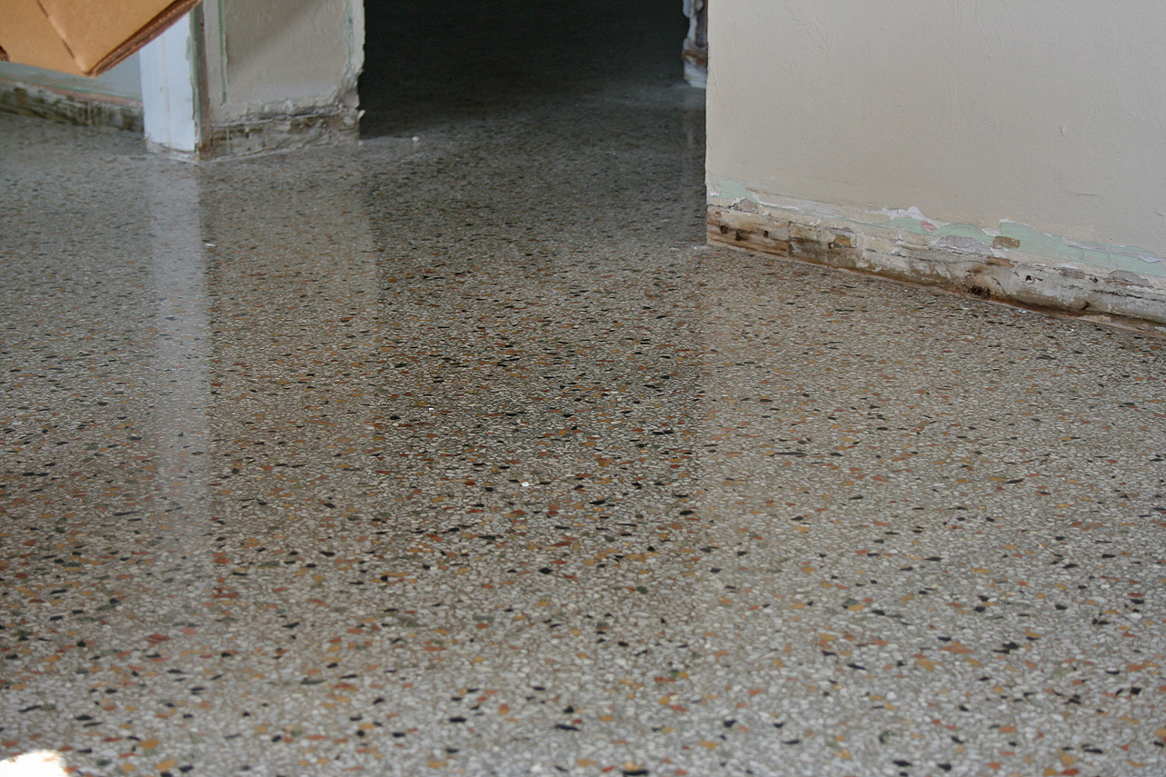 revealing some of the old terrazzo that was left unfinished the technician cleaned up these areas so the terrazzo floor is uniform around the doorways