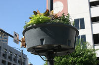 Shockoe Bottom Lightpost Planters
